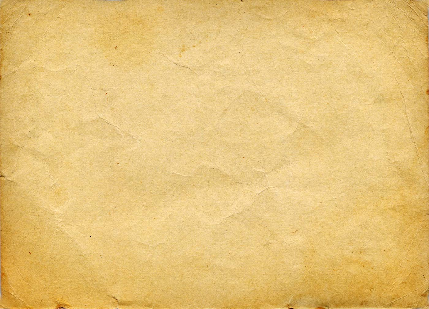 backdrop paper